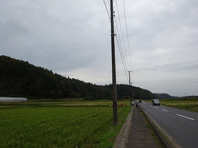 DSC01843.jpg